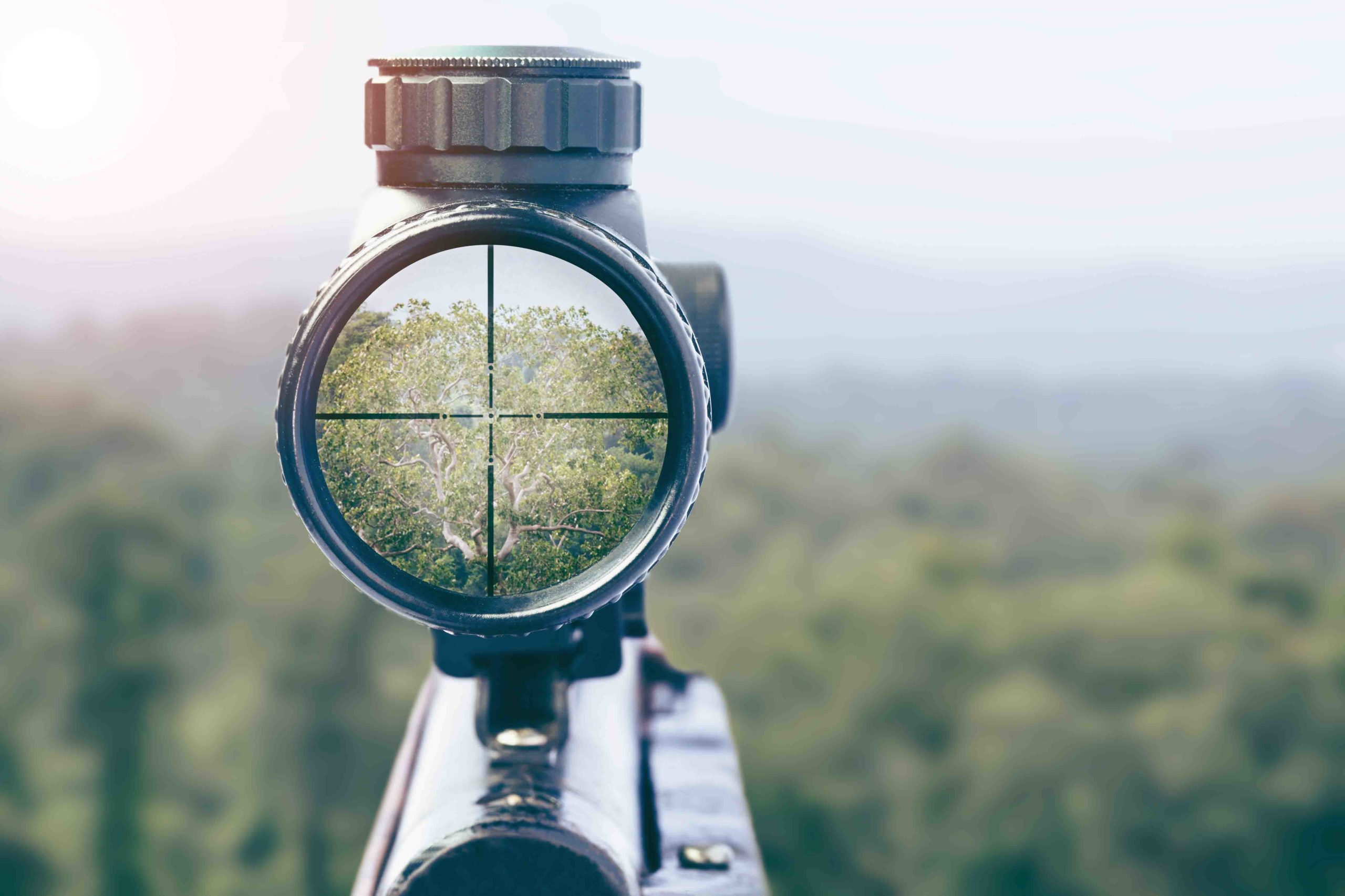 rifle target view on Natural Background. Image of a rifle scope sight used for aiming with a weapon